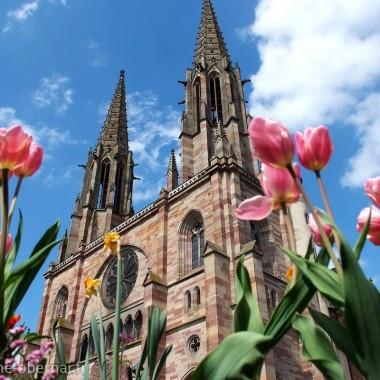 L'Eglise Saints-Pierre-et-Paul