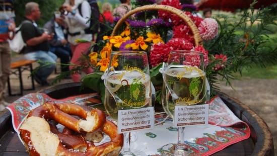 Gastronomical stroll through the Schenkenberg vineyard
