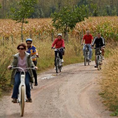 ANNULÉ - Randonnée cyclotouristique - 26ème Bretzel du Mont Sainte Odile