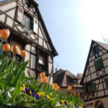 Crédit photo : Office de tourisme de Obernai