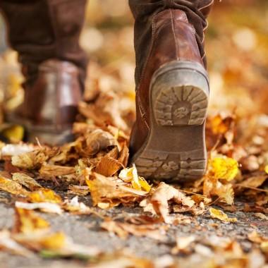 Marche d'automne