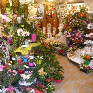 Aux fleurs d'Obernai - Griesser