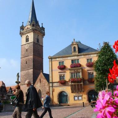 La vieille ville d'Obernai Réf 01