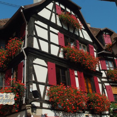 Obernai: the Alsatian house and its half-timbering Ref 04