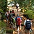 Wanderung um den Odilienberg und die Heidenmauer