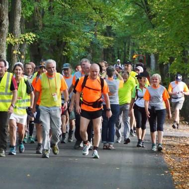 Obernai - Gengenbach - marche du jumelage