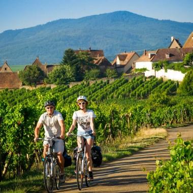 07 Circuit vélo 'La route des vins'
