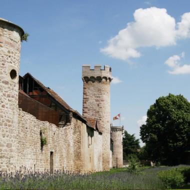 Fête de la Route des Châteaux d'Alsace -Visite guidée