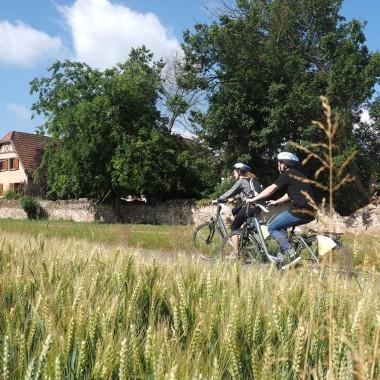 Fête du vélo - Obernai et Pays de Sainte Odile