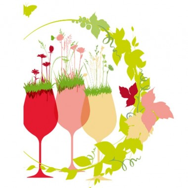 Apéro  - Vins étrangers