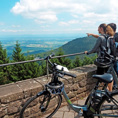 Circuit Obernai-Mont Sainte Odile