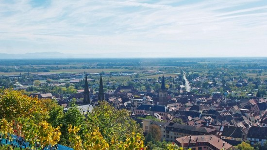 Have a stroll along the Wine trail of Obernai
