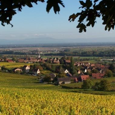 Mittelbergheim, 2ème Village préféré des français 2018